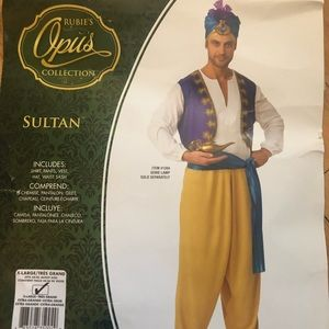 Ruban's Opus Collection Sultan Costume